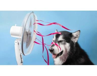 Hoe uw woning koelen?
